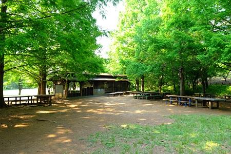 大谷戸公園キャンプ練習場
